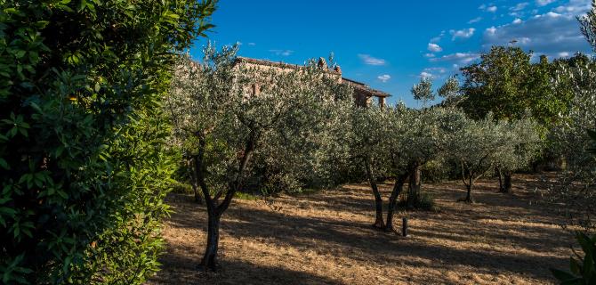 collazzone-abbazia-di-san-lorenzo-campagna