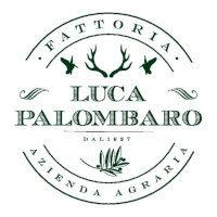 Palombaro_logo-page-001